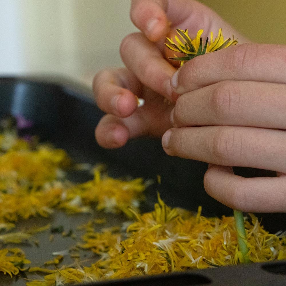 Blüten für nachhaltige Seifen