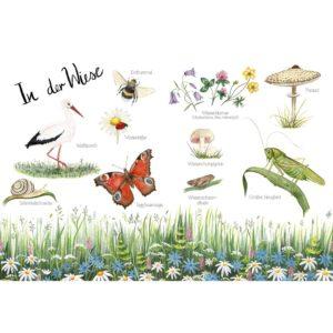 Naturlexikon für Kinder von Brigitte Baldrian