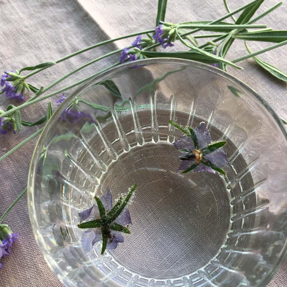 Eiswürfel mit essbaren Blüten und Kräutern