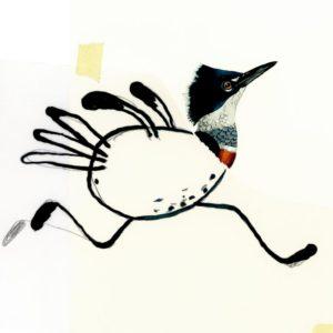 Malbuch Komische Vögel von Bohem